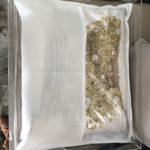 Envelopes protetores GW